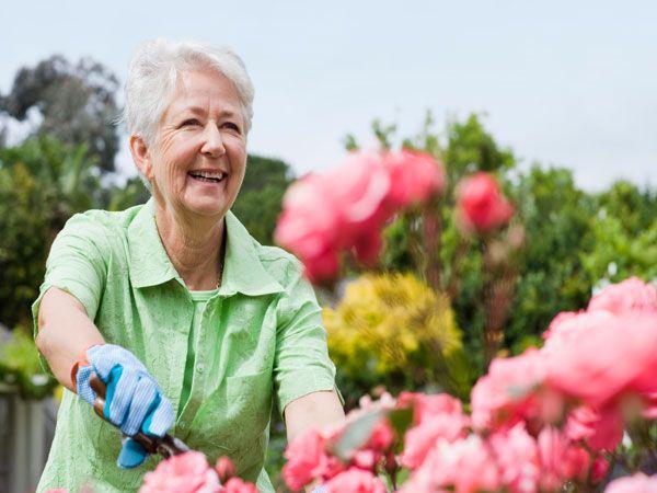 Miért fontos a kertben a talajvizsgálat? - Bálint gazda kertje   Bálint gazda kertje